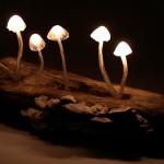 VIDEO: Idee de decor natural cu minilămpi de veghe în formă de ciupercuțe – DIY tutorial